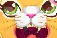 Dentista dei Gatti