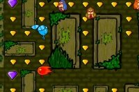 Fuoco e Acqua: Labirinto